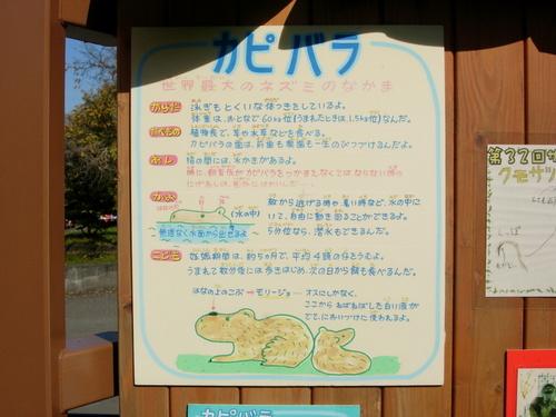 Sapporo_129