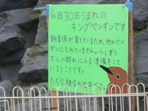 Sapporo_263